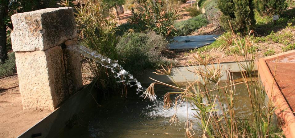 Dise o de fuente y acequia en jard n mediterr neo for Diseno jardin mediterraneo